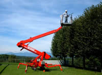 Absolute Tree Solutions Access Platform