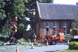 Sinclair Tree surgeon - equipment